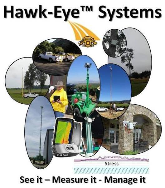 Hawk-Eye_Prices