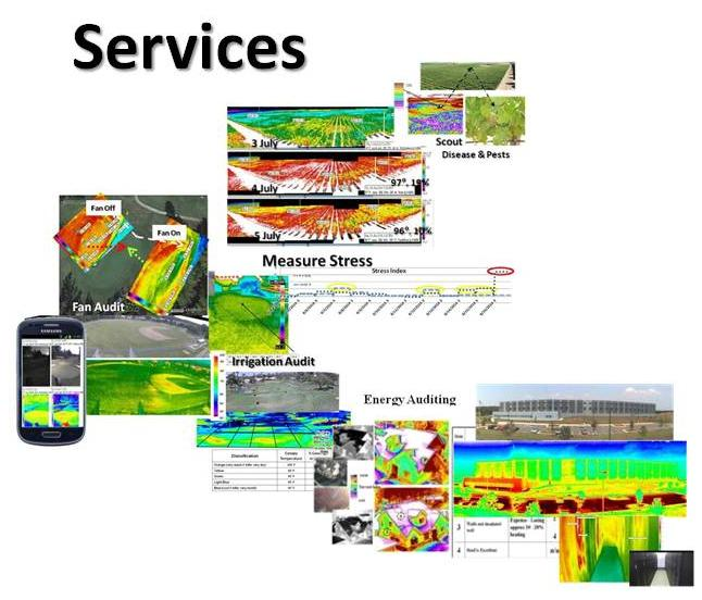 Services with Hawk-Eye